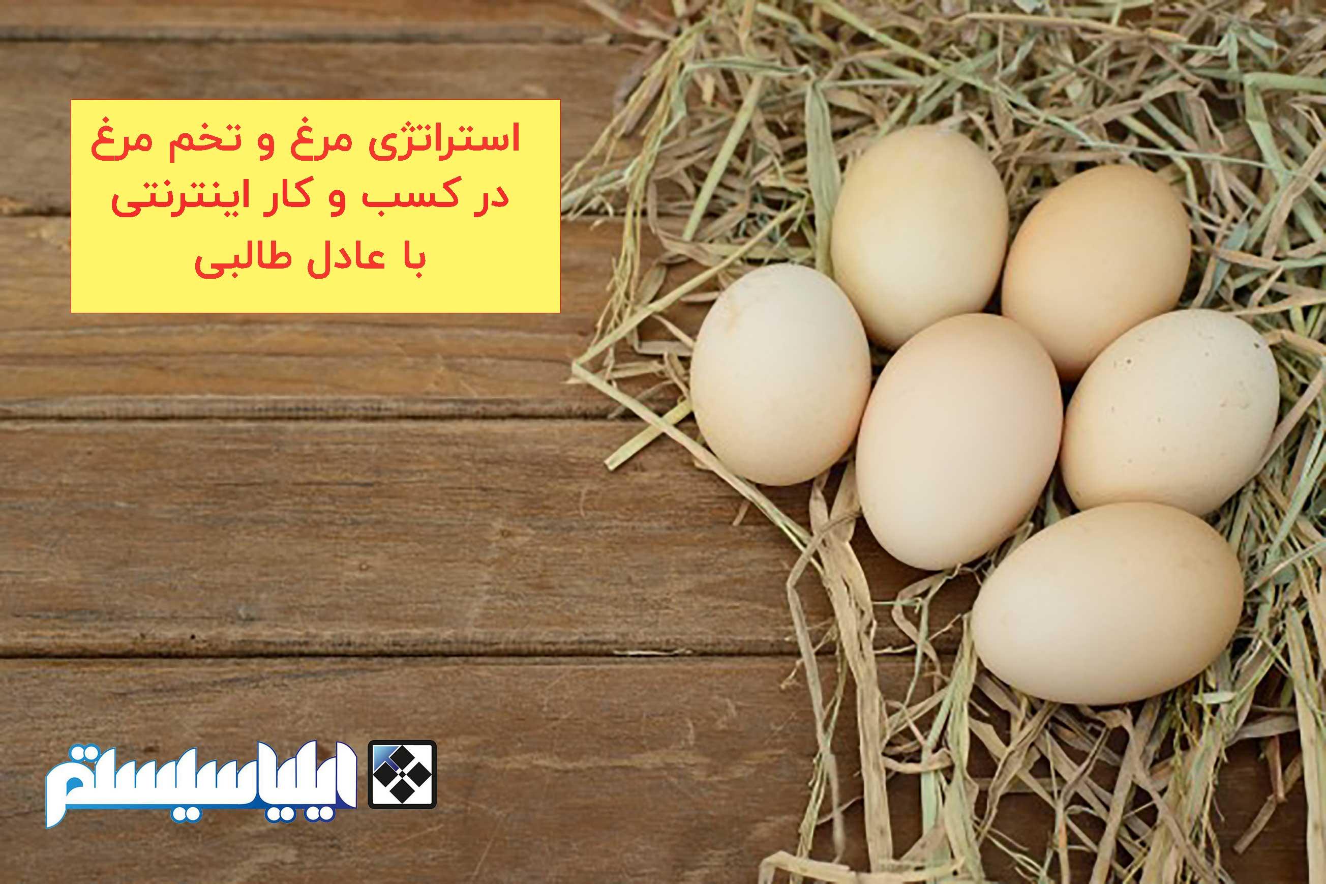 استراتژی مرغ و تخم مرغ در کسب و کار اینترنتی به گفته عادل طالبی (فایل شماره 2)